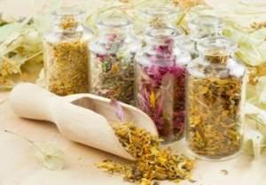 Сборы трав эффективны в лечении онихомикоза