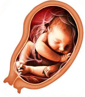 Околоплодный пузырь защищает ребенка, но микроорганизмы могут проникнуть и в него
